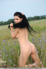 Black haired naked cutie posing outdoor-07